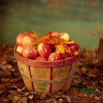 Autumn = Apples!